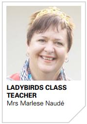 Marlese Naude